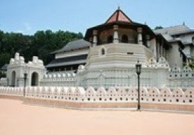 1 Day Tour Packages-Negombo-Kandy