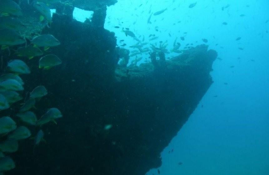 Deep Sea Fishing in Unawatuna