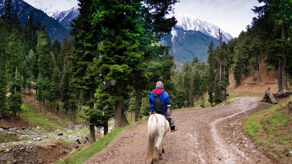 Heena Tours To Kashmir