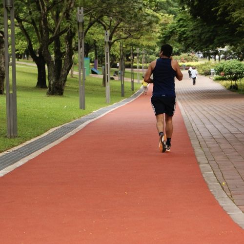 Ambience Tiverton Jogging Track