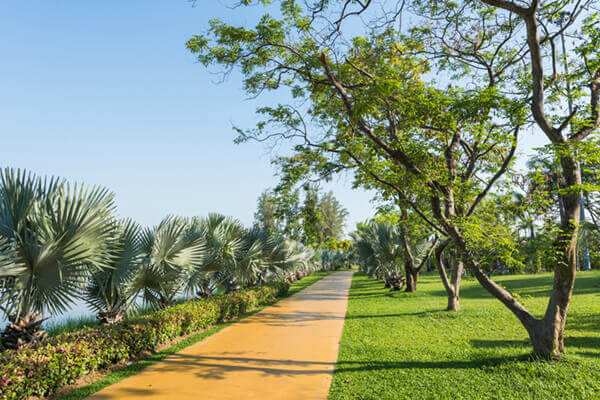 Provident Equinox Walking Track
