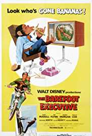The Barefoot Executive