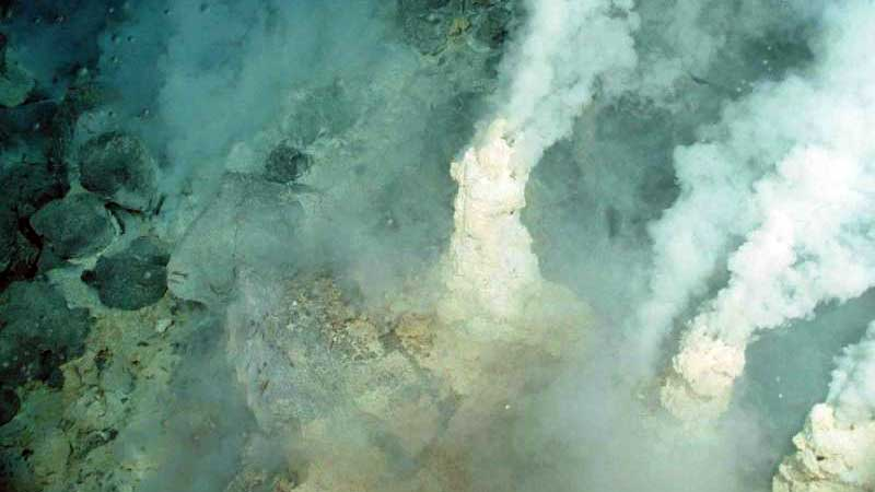Origin of life on Earth linked with hair bleach compond