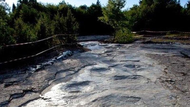 35-metre long-necked sauropod created world's longest dinosaur trackway in France