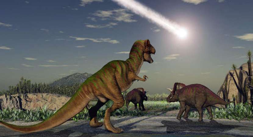 Toxic Flowers Killed Dinosaurs Long Before The Asteroid Strike