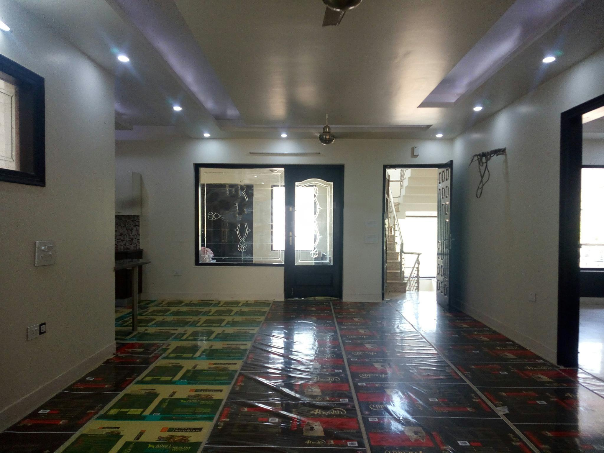 3 BHK  for rent in Sector 31}