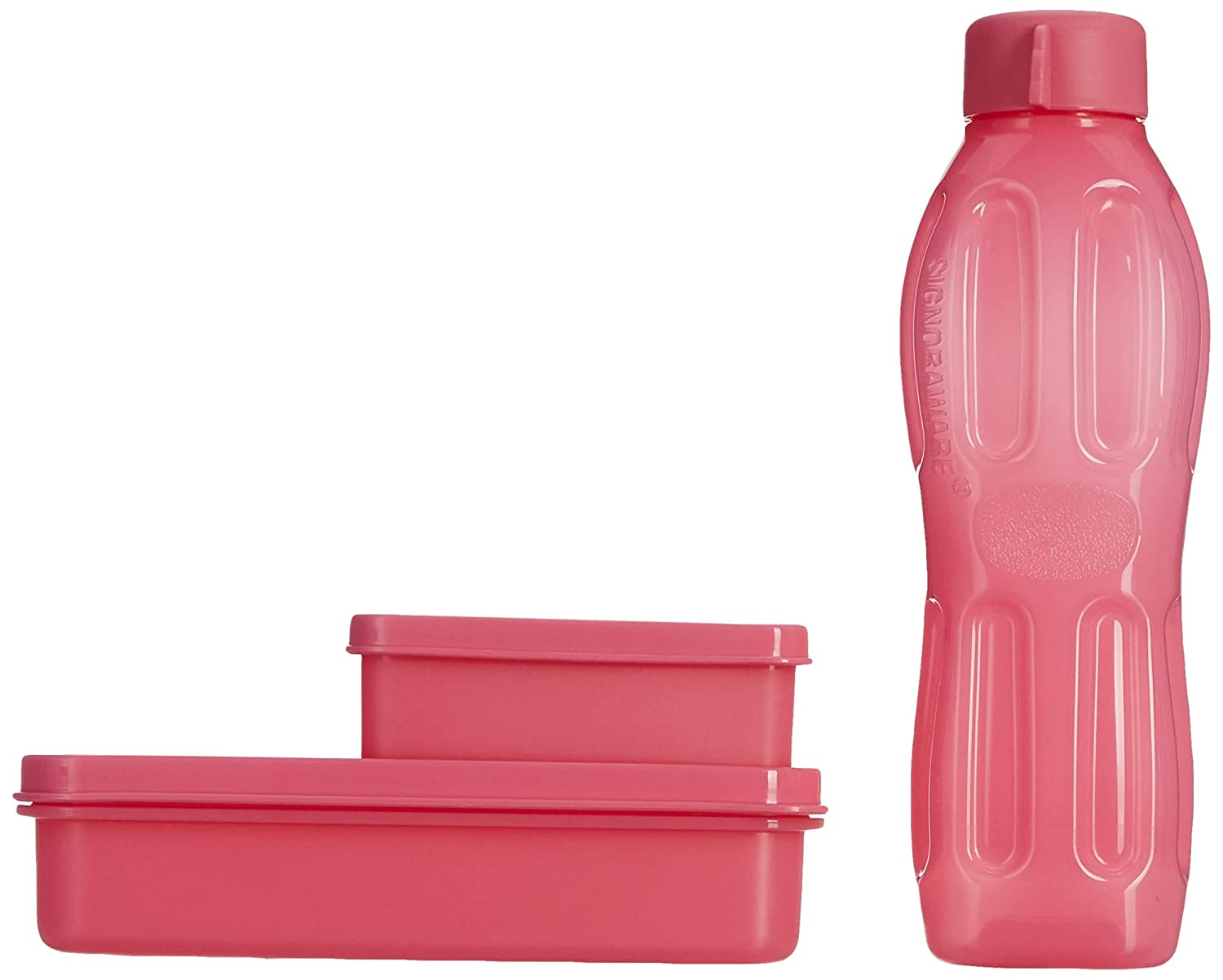 Signoraware 573 Little Champ Container, 3 Pieces (1200ml)