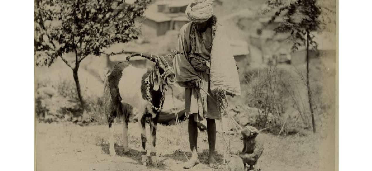 भारत के भूले हुए  मदारी