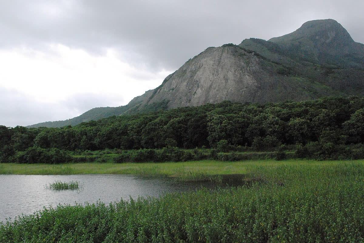 हमारी प्राकृतिक धरोहर और इसके संरक्षण की चुनौतियां