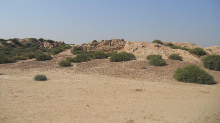 सिंधु घाटी सभ्यता का शहर: कालीबंगा