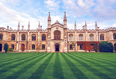 Join Cambridge scientists in solving global challenges