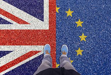 British universities bear the brunt of Brexit as EU enrollments decline