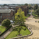 University of Southampton launches The Business School Summer Programme