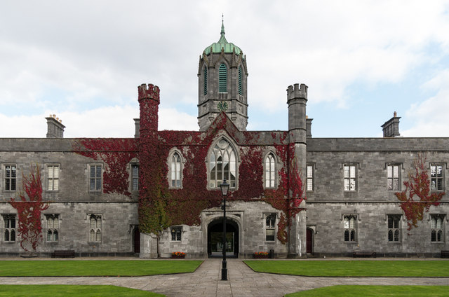 5 great hospitality management degrees in Ireland