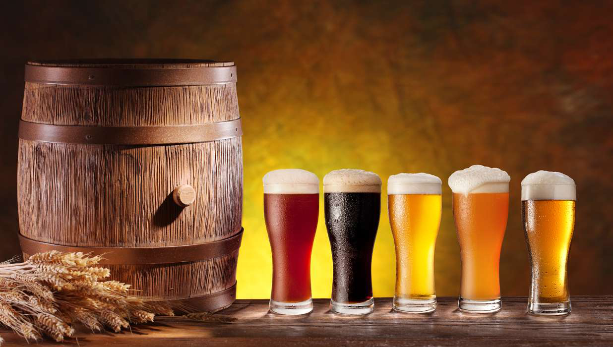 4 beer brewing courses