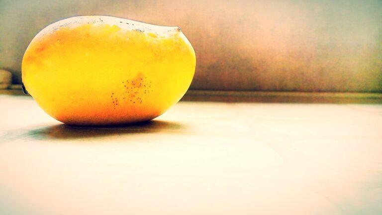 Mango – India's Gift to the World!