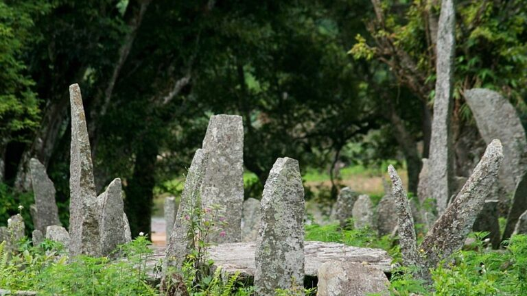 Meghalaya's Ancient Sentinels