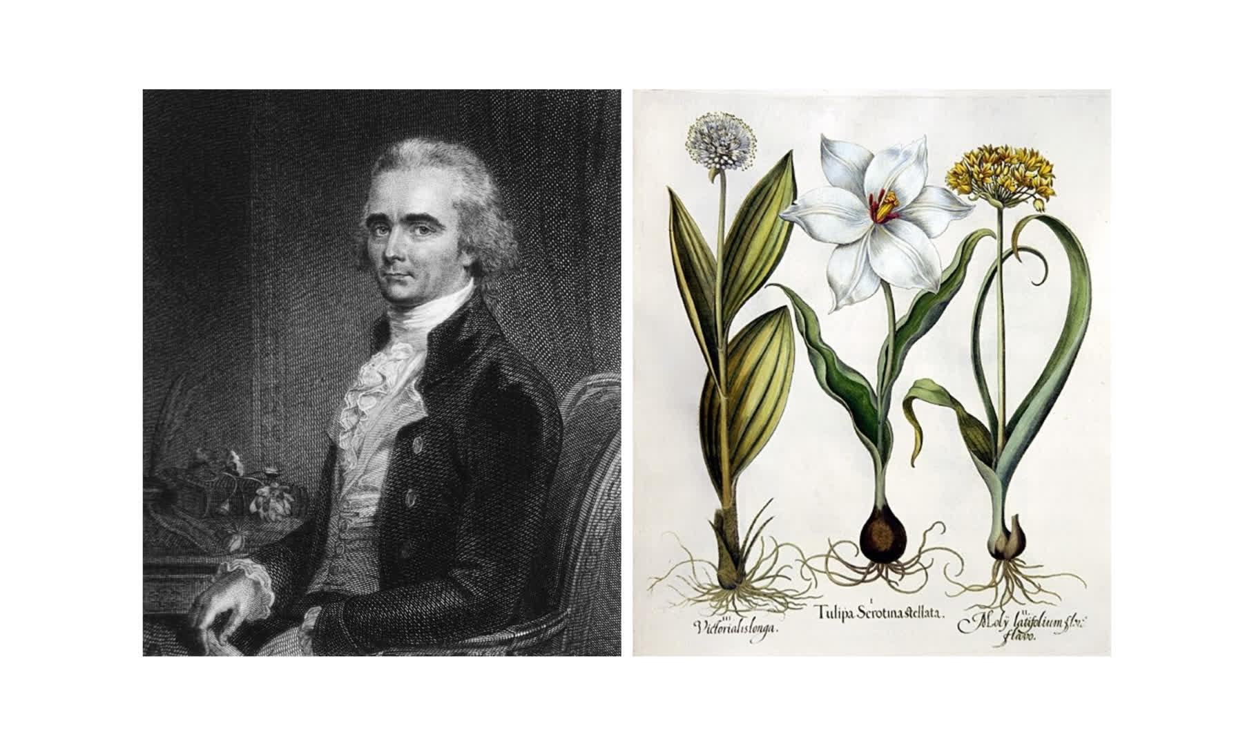 Dr William Roxburgh: Pioneer of Indian Botany