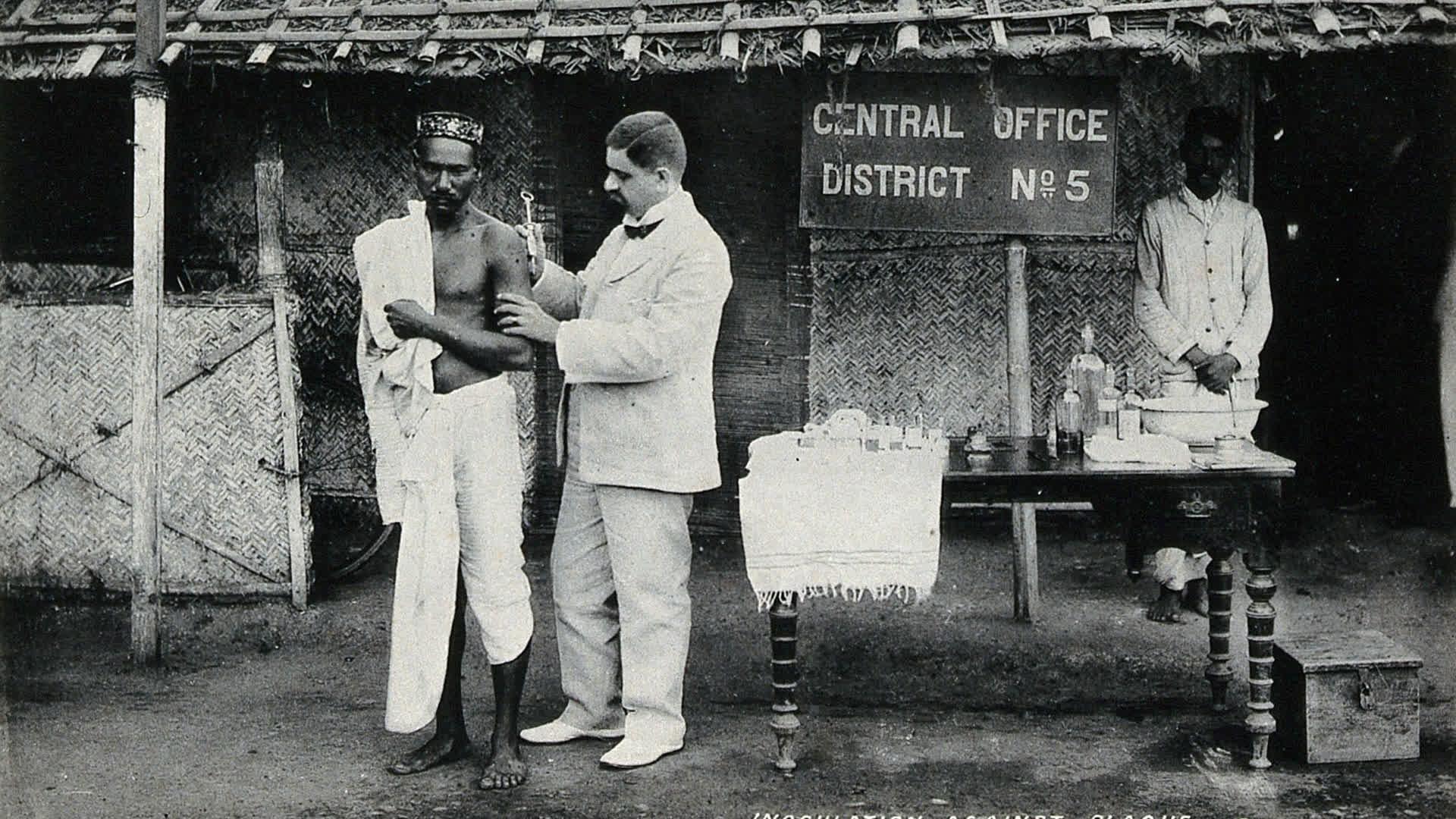 Pandemics Through Indian Literary Lens