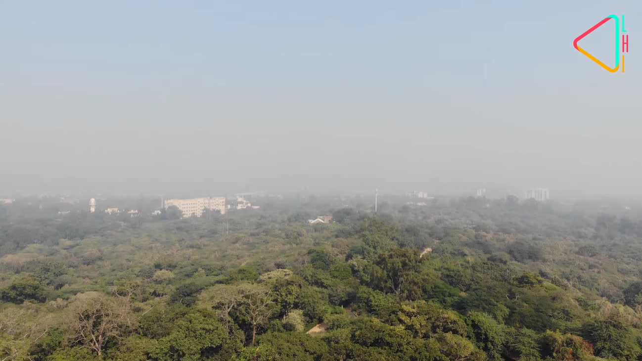 Delhi Ridge: An Ecological Marvel