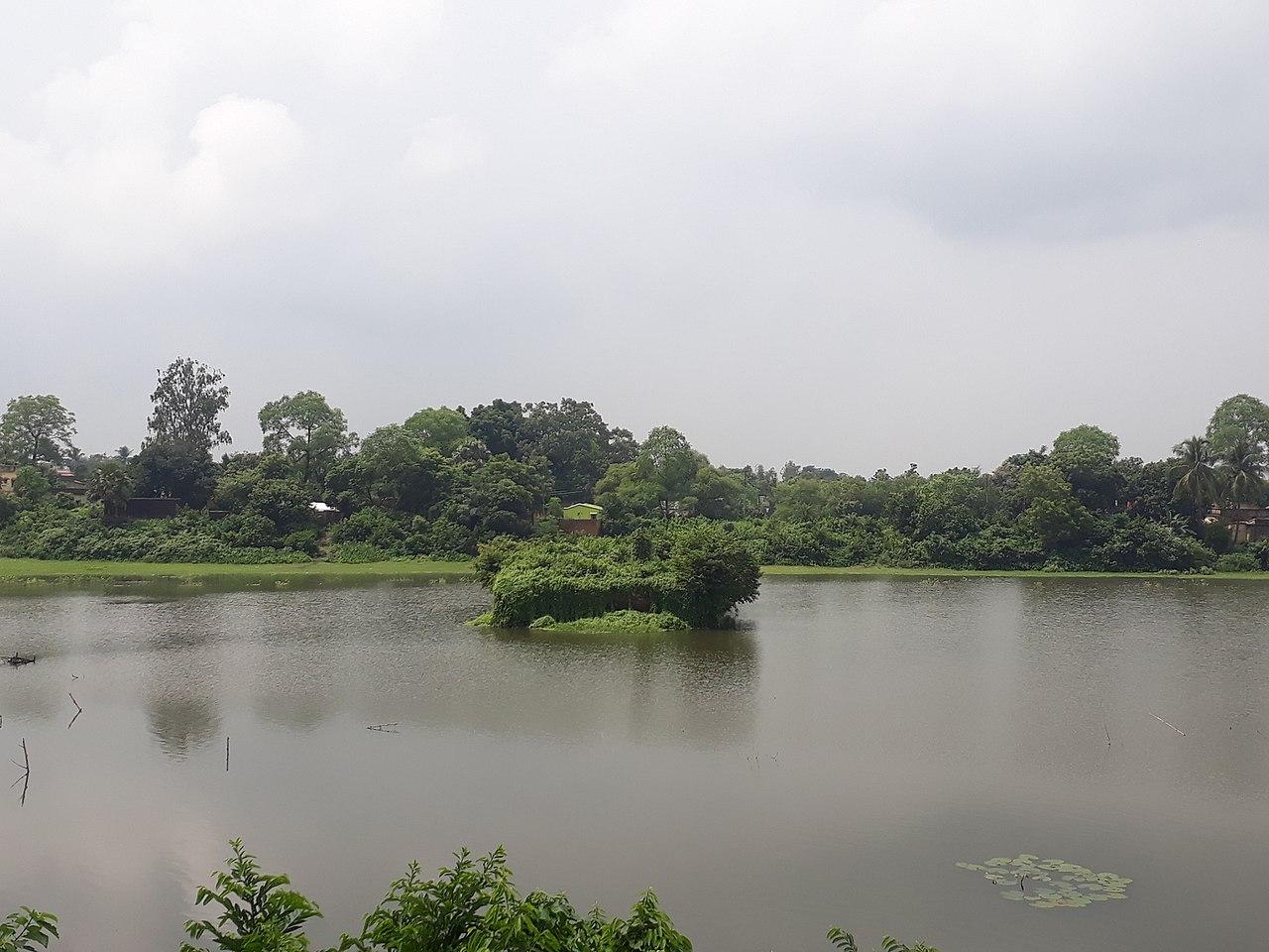 Rajnagar Kalidaha