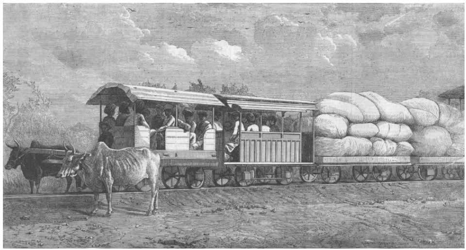 Bullocks hauled train on 2 feet 6 inches wide 3 lbs rail connecting Dabhoi with Miagam, Gaekwar's Baroda State Railway