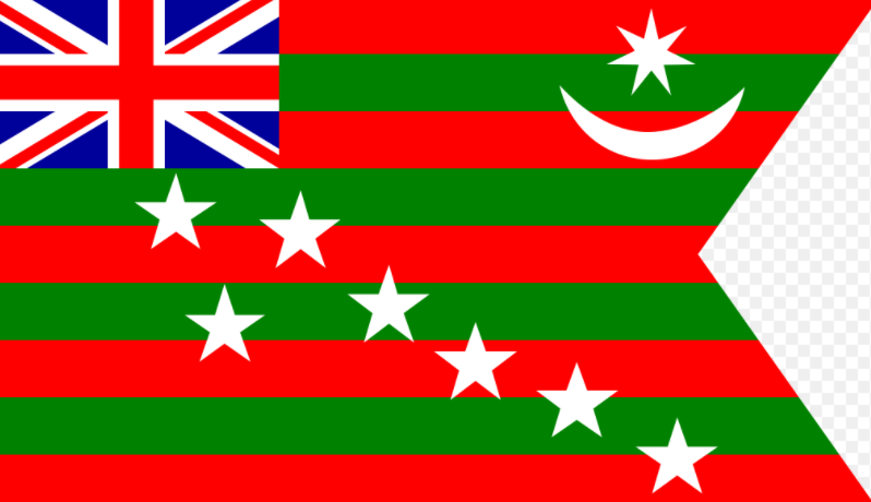 Official Flag of Home Rule League