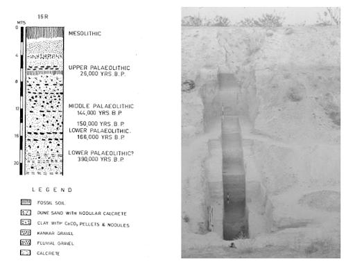 Didwana Section at Sand Dune site 16R, Nagaur District, Rajasthan - After Hema Raghavan (et al) 1989