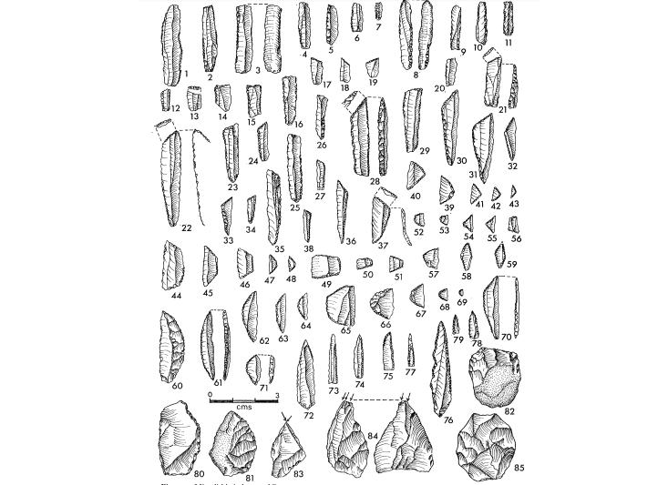 Mesolithic tools excavated at Bagor - After V N Misra