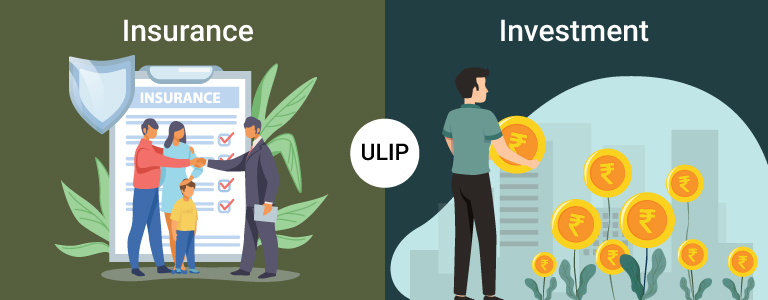 Enjoy the Double Benefits of Unit Linked Insurance Plans: Insurance Cover + Investment
