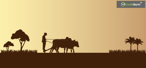 Farm-Loan Waivers and the long-term solutions