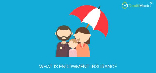 What is endowment insurance?