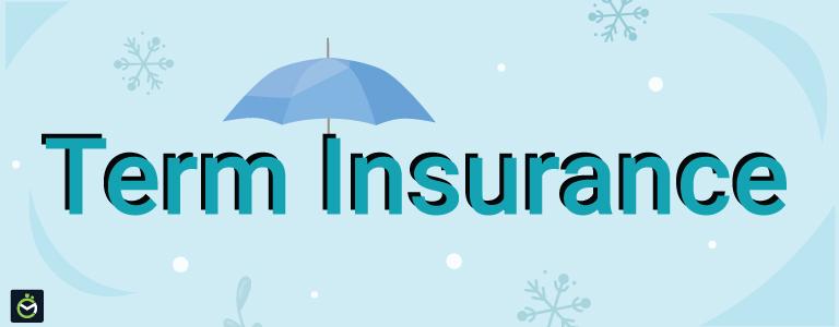 What is Return of Premium Term Insurance?