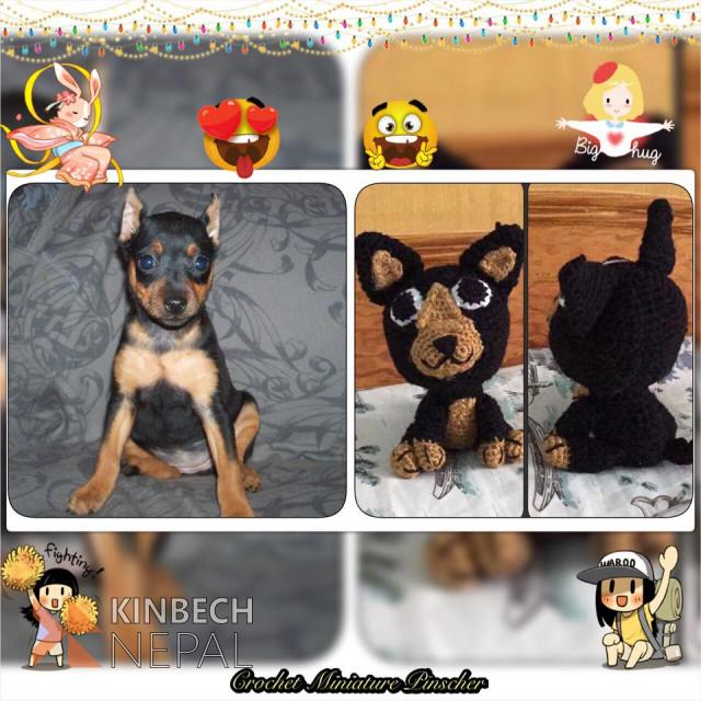 Crochet Miniature Pinscher | www.kinbechnepal.com