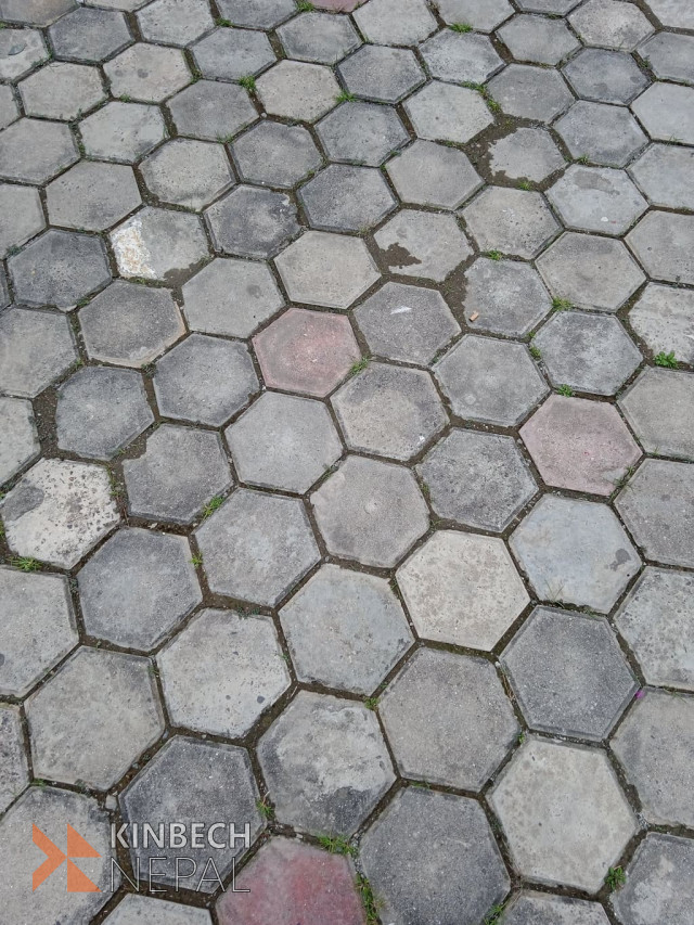 Hexagon Block Tiles Paver Just Rs 10 Only   www.kinbechnepal.com
