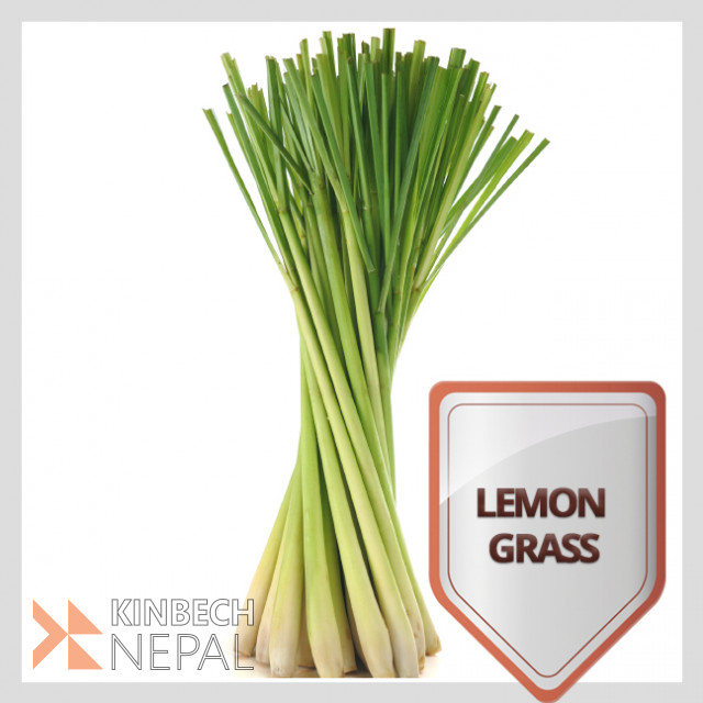 Lemon Grass Dry Leaves | www.kinbechnepal.com