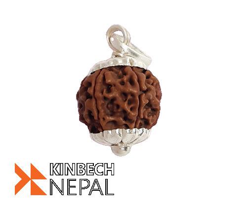 Rudraksha By Nepal Rudraksha | www.kinbechnepal.com