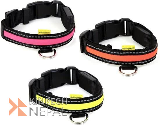 Dog Collar with Led | www.kinbechnepal.com