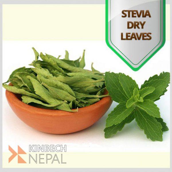 Stevia Dry Leaves | www.kinbechnepal.com