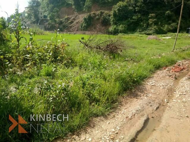 भिम्ढुङा 6 हाल नागर्जुन नगरपालिका 8 मा 6 आना घडेरी बिक्रीमा | www.kinbechnepal.com