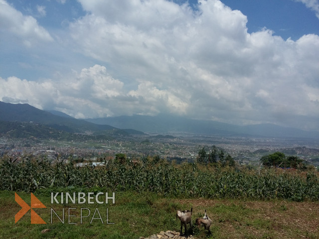 Land in Machhegaun For Sale | www.kinbechnepal.com