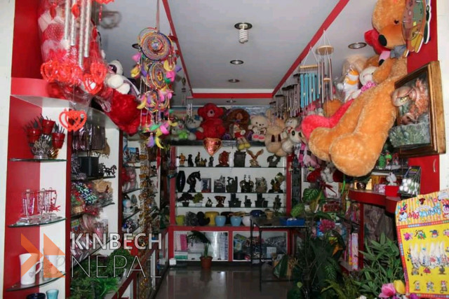Cut Flower, Aquarium & Gift Shop in Pokhara For Sale | www.kinbechnepal.com