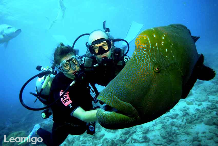 Beginner Scuba Diving Experience In Bali