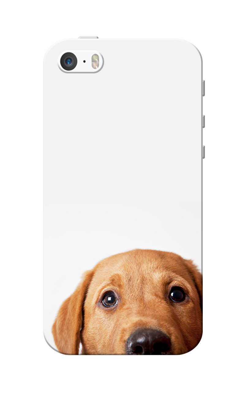 Caseria Dog White Slim Fit Hard Case Cover for Apple iPhone 5/5s