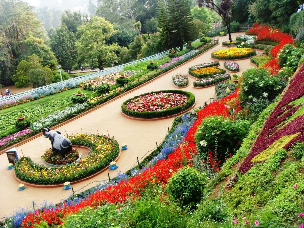 The-Rose-Garden-Chandigarh