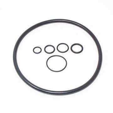 Picture of RUBBER O RING SET FOR HP036 (00419129)