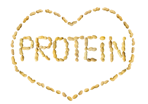 Image result for Check Protein