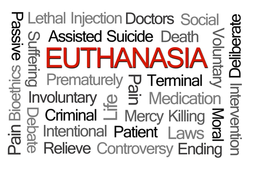 the controversy of voluntary and passive euthanasia in the united states The debate surrounding physician-assisted suicide in the united states has been influenced by medical practices in other countries, particularly the netherlands, which legalized both active euthanasia and physician-assisted suicide, in april 2001 (effective 2002.