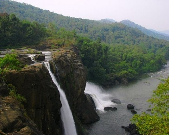 Image result for anaimalai forest