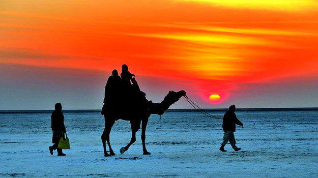 Image result for rann of kutch